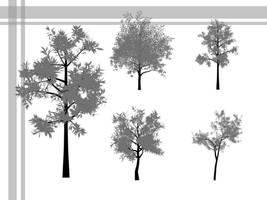 Tree Brushes -- Photoshop 7+ by deathoflight