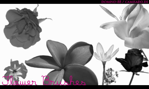 .7 - flower brushes by domino-88