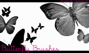 .2 - butterfly brushes