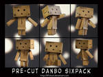 DANBO Sixpack