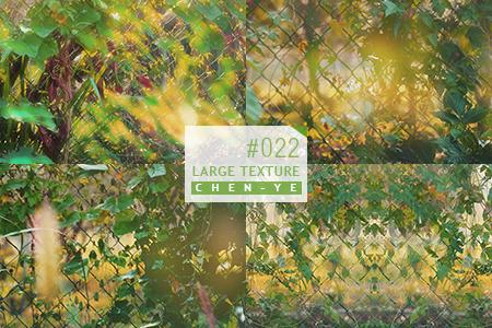 22 Texture by Chen-Ye by Chen-Ye