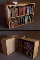 Full Bookshelf Download by LuxXeon