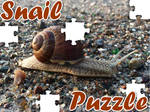 Snail Puzzle Game
