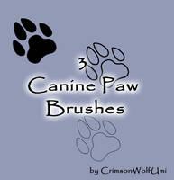Canine Paw brushes by CrimsonWolfSobo