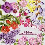 floral png