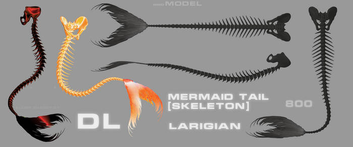 model_104 .mermaid tail (skeleton)