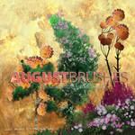 Flower-Brushes-August