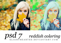 PSD 7 by xlighthearted