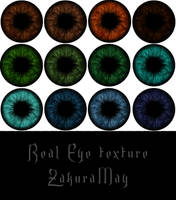 [ Real Eye texture ][+Download] #3 by Metra-Philia