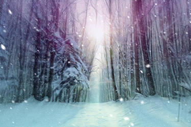 Snowfall in the forest ANIMATION