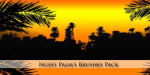 Ngees Palm's Brushes Pack
