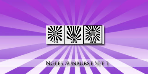 Ngees Sunburst brush Set by ngee