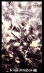 Ninja Brushes 05 and Fractals by silverninja