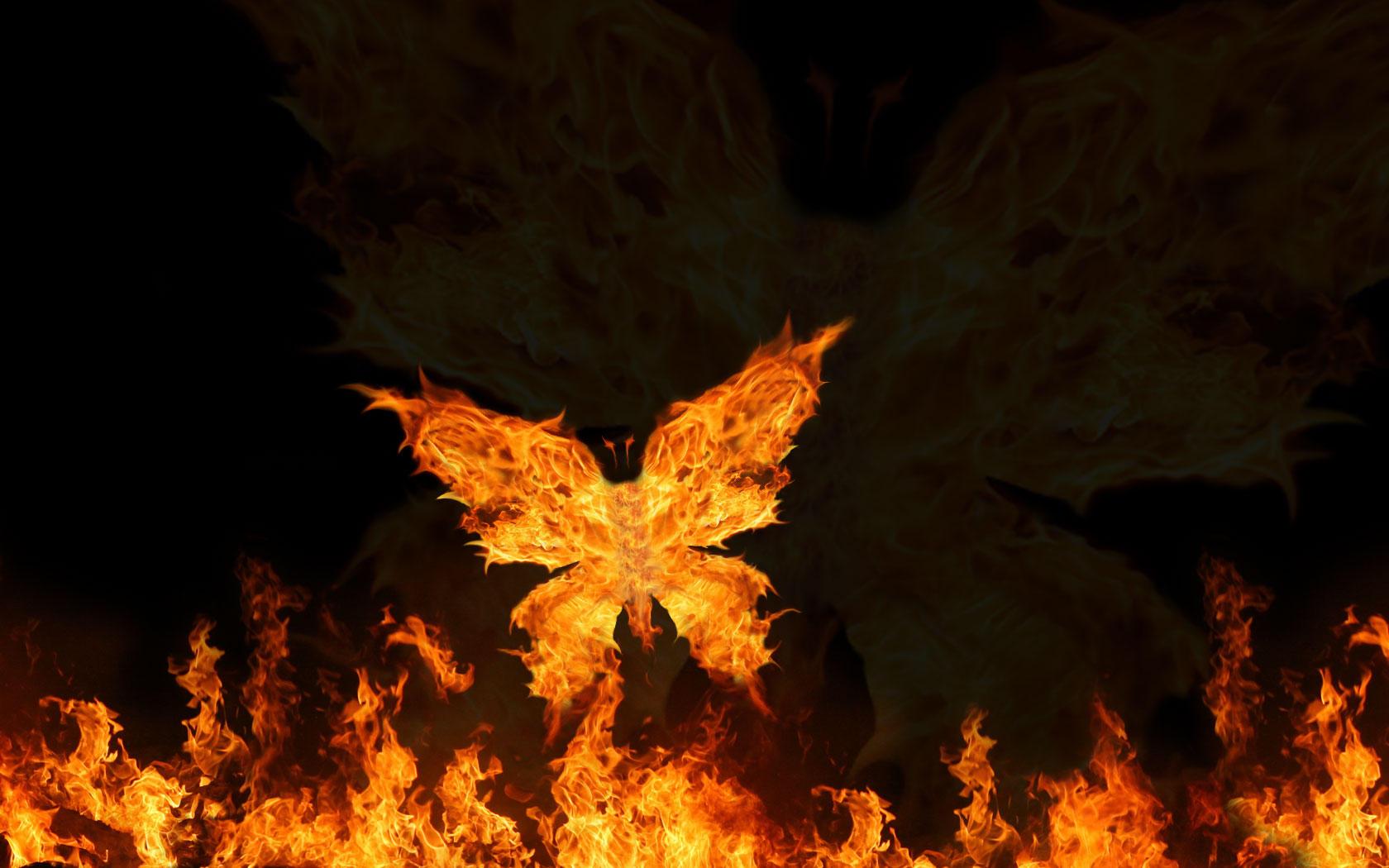 پروانه ی سوخته