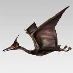 Pterodactyl animation by maccollo