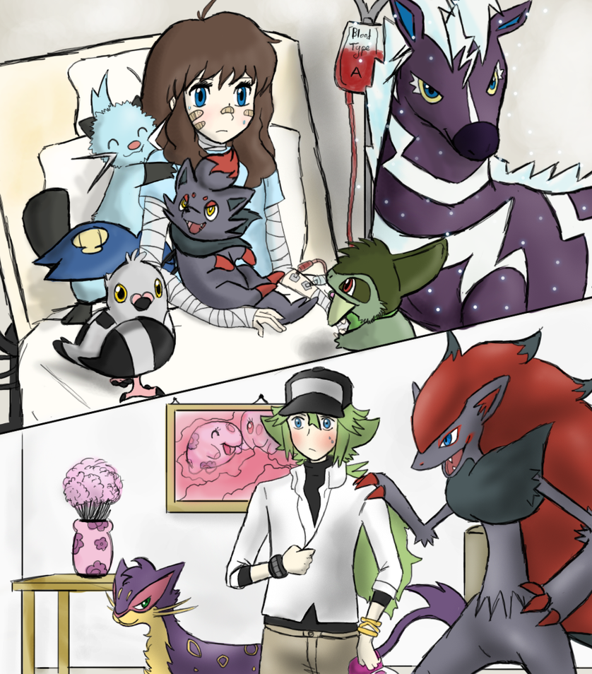 Room Pokemon Black Version  Espa F Af Ac D