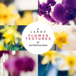 6 Flower Inspired Light Textures / 03 by saftbefehl3000