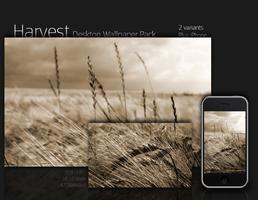 Harvest by salmanarif