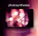 photosynthesize