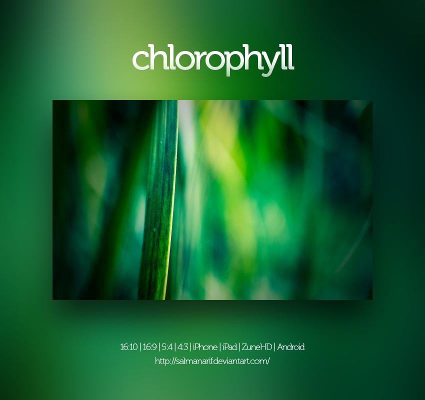 chloropyll by salmanarif