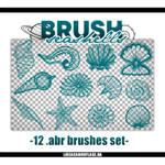 Resource #36: Seashells Brushes Set