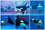 Shamu Downloadable Stock Pack