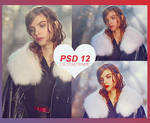 PSD 12 by cirlyisnotmyname