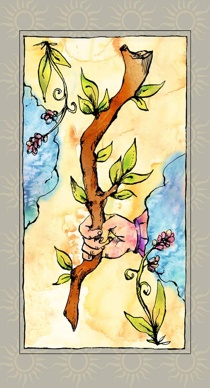 Tarot card- Ace of Wands
