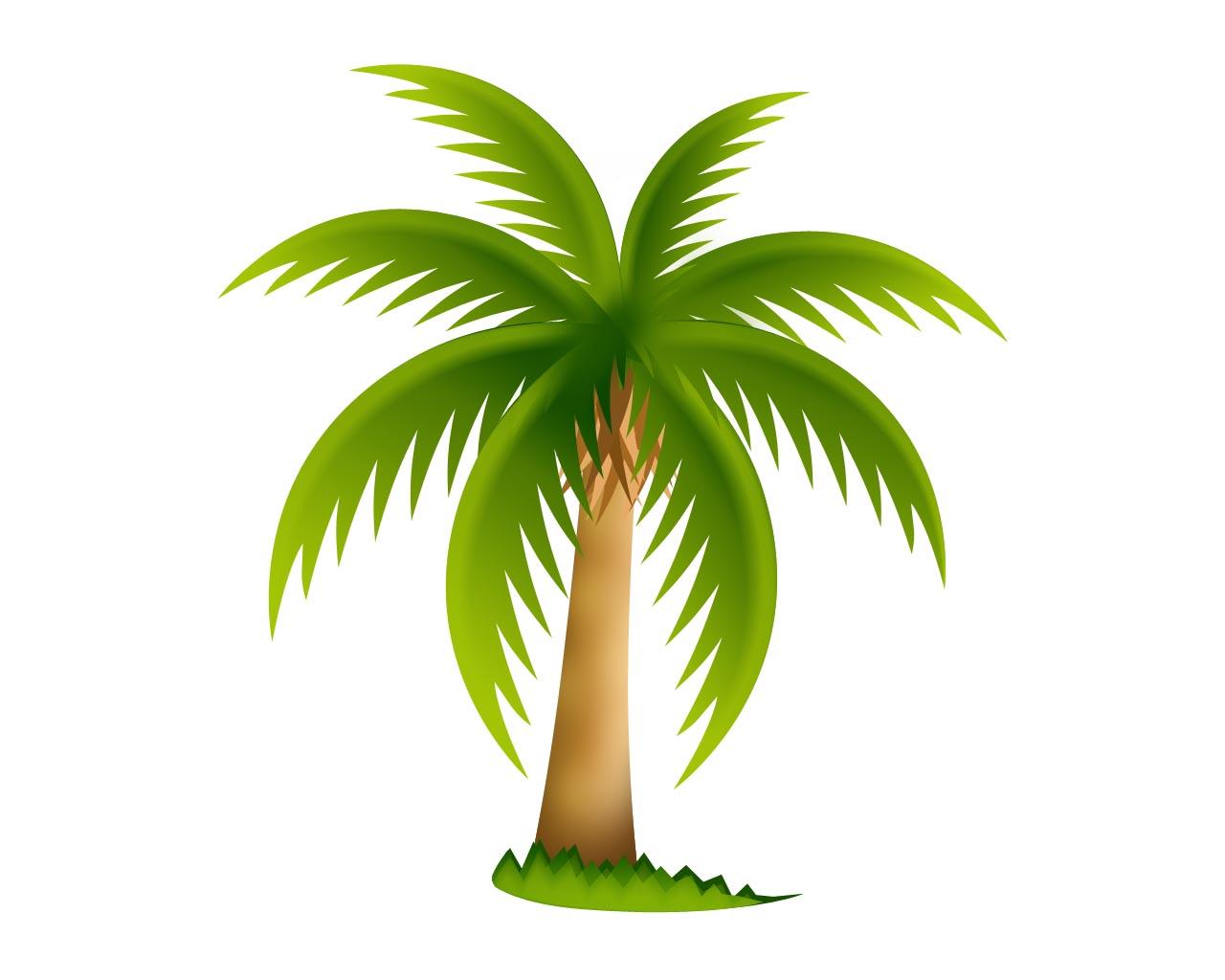 Palmera psd by gianferdinand on deviantart - Como hacer una palmera artificial ...