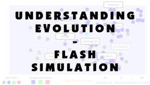 Understanding Evolution by larkinheather