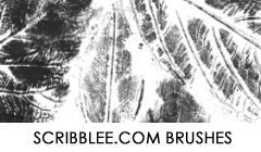 Leaf Prints Brush Set by justcar