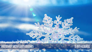 Photoshop Snowflakes Brushes {G3RTI-ALBANIA}
