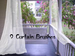 curtain Brushes 2