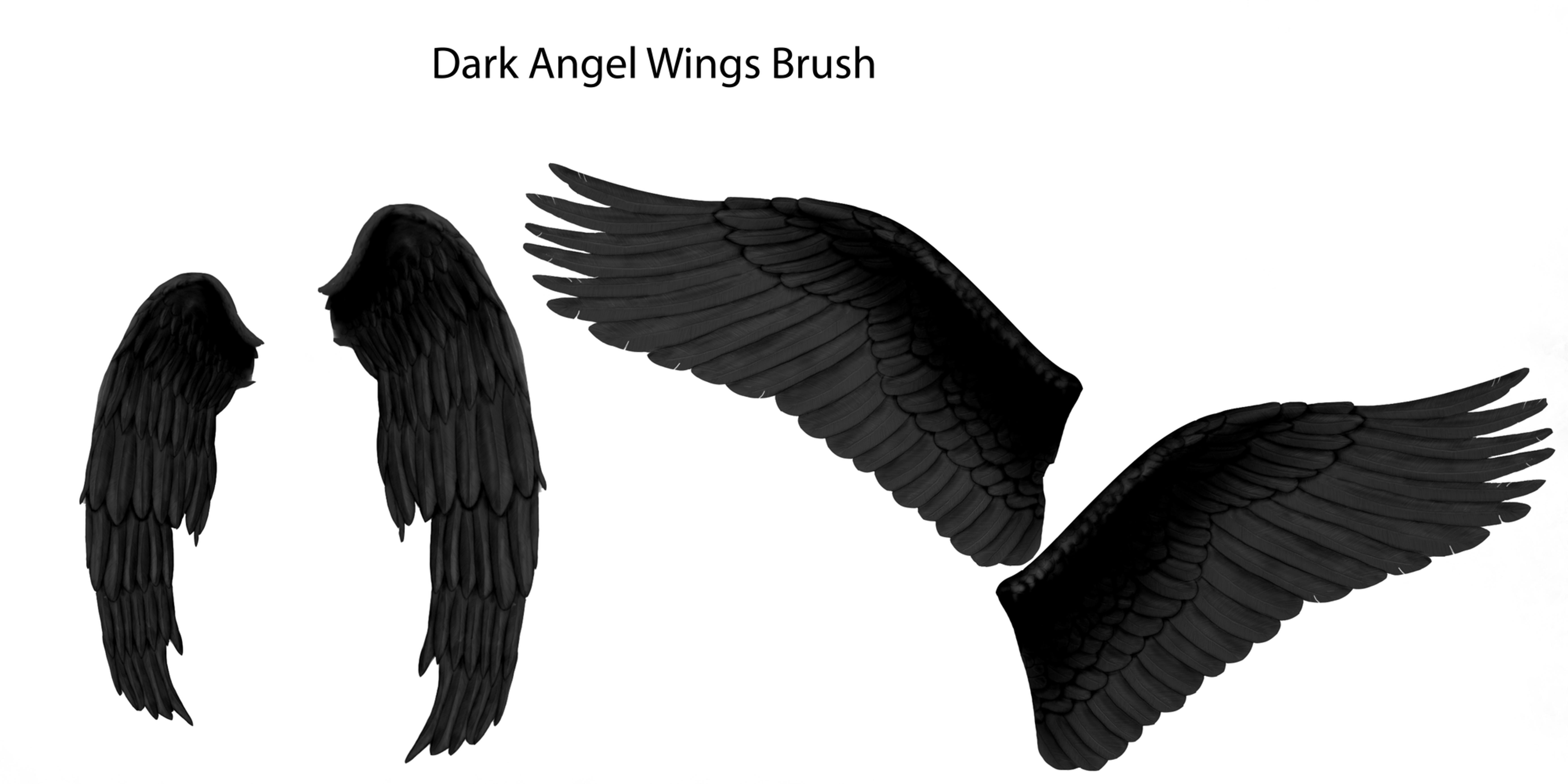 Dark Angel wings brush by farmerstochter