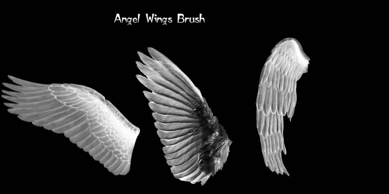 Agel wings brush by farmerstochter