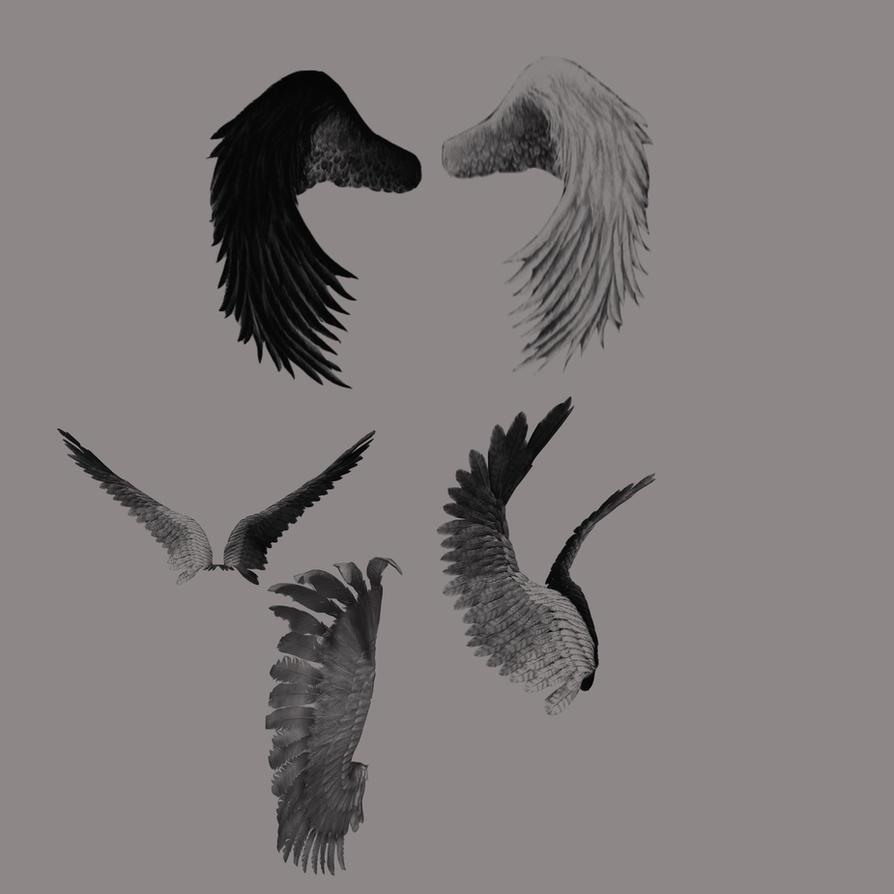 Angel wings brush 2 by farmerstochter
