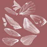 Fairy wing brush