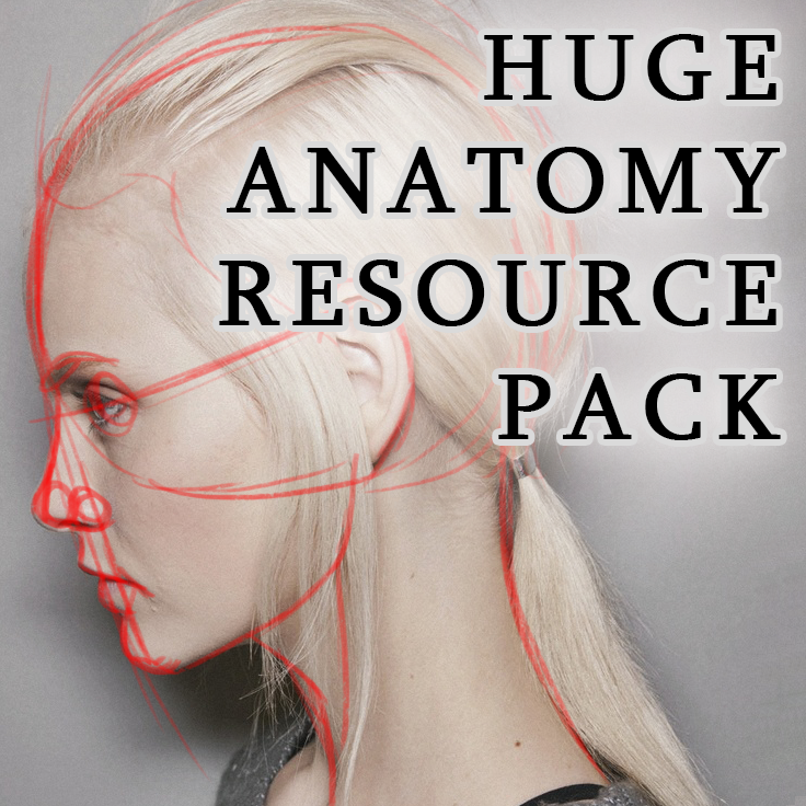 HUGE Anatomy Resource Pack by LadyLombax on DeviantArt