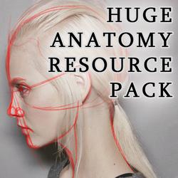HUGE Anatomy Resource Pack by LadyLombax