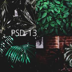 PSD 13 by AlexRow122