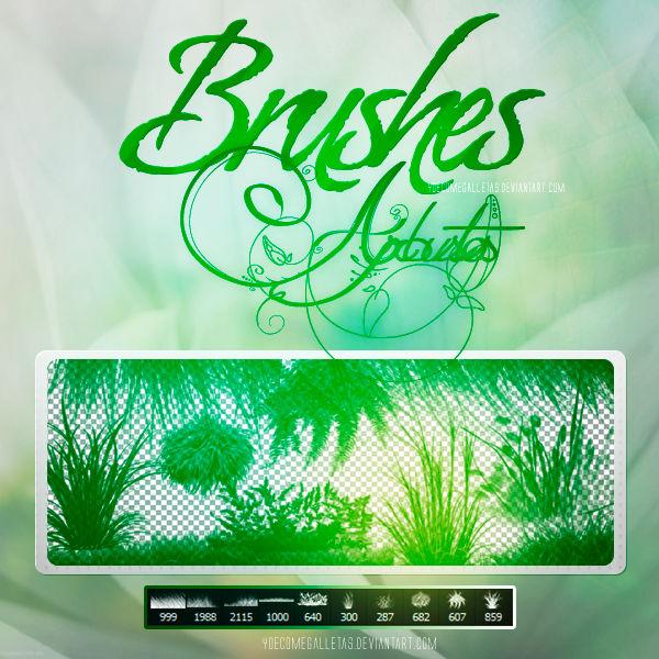 Brushes De Arbustos - YoeComeGalletas