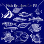 Fish Brushes for PS