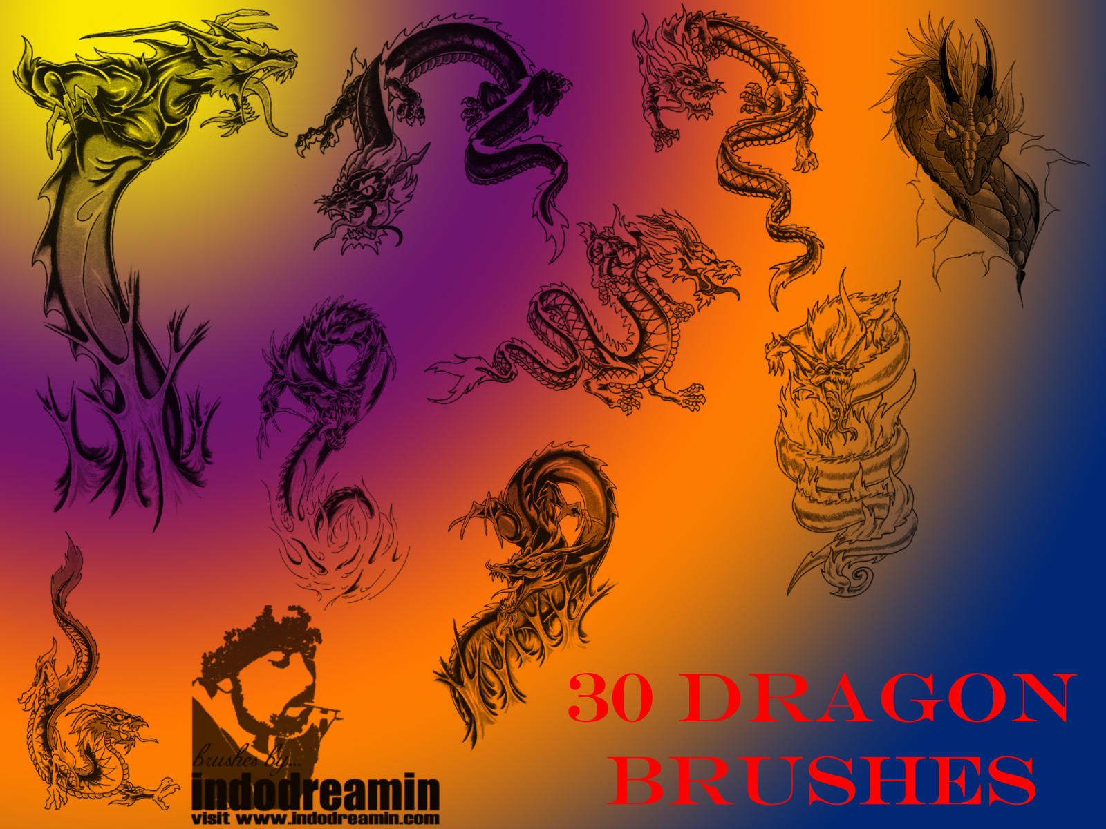Dragon Brushes by indodreamin