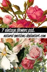 7 vintage flowers psd.