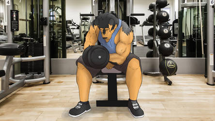 Gym Animation