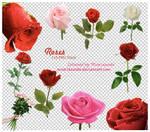 Roses . . 10 PNG Files
