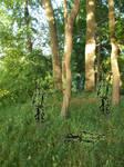 Grass2Wald tests
