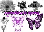 Sometime in Spring