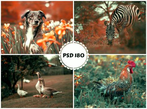 PSD 180 - animals