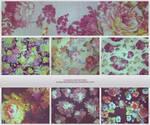 8 large floral textures